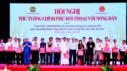 Xây dựng, phát triển nguồn dữ liệu thông tin lớn về nông nghiệp, nông dân, nông thôn trên báo điện tử Dân Việt