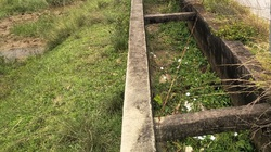 Tình trạng ruộng đất bỏ hoang ở TP.Móng Cái: Lãng phí đất đai, người dân bất an