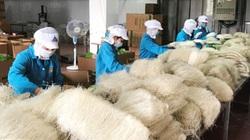 Hà Nội sẽ ưu tiên bố trí vốn cho các dự án bảo tồn làng nghề