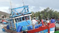 Quảng Ngãi: Tàu cá cùng 3 ngư dân bị sóng biển đánh chìm trong đêm