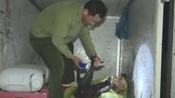 Cà Mau: Đáng ngại, xẻ thịt trộm 1 con nai rừng to nặng đến 150kg
