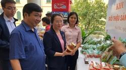 Hà Nội: Bàn giải pháp giúp nông dân phát triển mỗi xã, phường 1 sản phẩm-OCOP