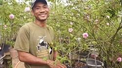 """Quảng Nam: """"Cãi lại cả làng"""", nông dân U40 bất ngờ lãi hàng trăm triệu mỗi năm nhờ chung thủy với loài hoa """"nữ hoàng"""""""