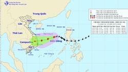 Bão số 10: Thừa Thiên Huế - Quảng Ngãi nguy cơ lại hứng mưa lớn 300-400mm
