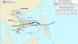 Bão số 10 gây mối nguy cao đối với tàu thuyền, lồng bè nuôi thủy sản và mưa to, lũ ở miền Trung