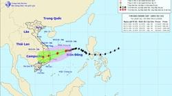 Khẩn cấp: Bão số 10 gây gió mạnh trên biển, mưa lớn ở miền Trung và Bắc Tây Nguyên