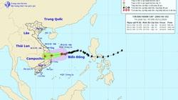 Vừa ngập lụt, miền Trung lại tiếp tục hứng mưa lớn 250-300mm do bão số 10