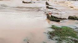 Bình Định: Cho học sinh nghỉ học từ sáng mai, tránh bão số 12