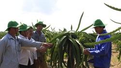 Góp ý văn kiện Đại hội Đảng: Phải coi nông nghiệp là một nghề, nông dân được đào tạo, đóng bảo hiểm
