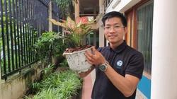 Tái khởi nghiệp sau dịch: Xuất khẩu đất trồng cây