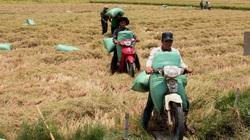 Diện mạo mới ở vùng biên Đắk Lắk