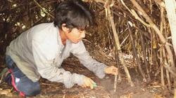 Tây Ninh: Sản vật núi rừng ở đây là thứ gì mà dân đi đào gặp nguy hiểm vẫn cứ đi?