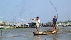 Tháng 11 này mực nước đầu nguồn sông Cửu Long tăng hay giảm?