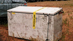 Xác ướp khỏa thân của thiếu nữ xinh đẹp trong tủ đông: Bí mật trong chiếc xe bị đánh cắp