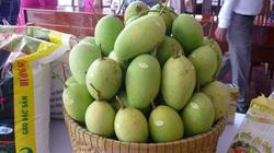Xuất khẩu rau quả giảm mạnh, điểm sáng duy nhất là trái xoài