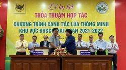 Bình Điền ký kết với Khuyến nông Quốc gia về canh tác lúa thông minh