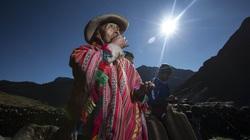Vua khoai tây - người đàn ông trồng 400 loại khoai tây ở dãy núi Andes