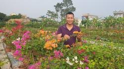 Thái Bình: Trồng bạt ngàn hoa lạ, cây cảnh lạ trên ruộng bỏ hoang, ông nông dân 8X có cơ ngơi tiền tỷ