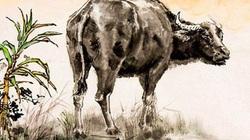 Tháng 11 Âm lịch này, có ba con giáp liên tục gặp may, kiếm tiền chặt túi