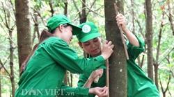 Nhân tố nào giúp cao su Việt Nam vượt qua một năm sóng gió, lợi nhuận đạt 4.955 tỷ đồng?