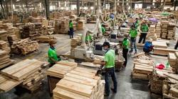 Bình Dương: Sản xuất công nghiệp là động lực