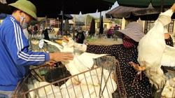 Giá gia cầm hôm nay 18/12: Gà, vịt ồ ạt về chợ đầu mối lớn nhất miền Bắc