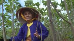 Những người Mường ở Lâm Đồng đã thoát nghèo nhờ con tằm