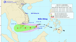 Tin mới nhất về bão số 14: Bão cách Huyền Trân khoảng 280km về phía Đông Đông Bắc, gây sóng cao 5-7m