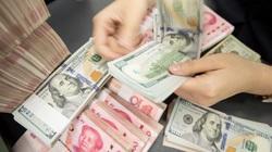 Nhiều sai sót khi đưa ra các tiêu chí xác định Việt Nam thao túng tiền tệ