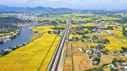 """Bình Định: Xuất hiện tình trạng lợi dụng kẽ hở quy chế đấu giá của tỉnh, """"thông đồng"""" nâng giá đất"""