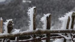 Miền Bắc sắp vào chính đông, có những đợt rét khốc liệt kéo dài 7-10 ngày
