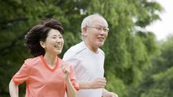 Cần xây dựng môi trường thân thiện cho người cao tuổi