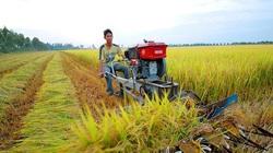 Năm 2021, cán bộ, công chức có được mua đất nông nghiệp?