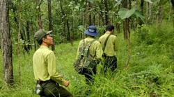 """Đóng cửa rừng tự nhiên không có nghĩa là """"rào kín"""""""