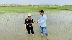 Vinaseed: Đưa tiến bộ khoa học kỹ thuật tới gần 20.000 lượt hội viên nông dân