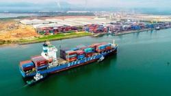 Cục Hàng hải yêu cầu hãng tàu container minh bạch giá cước vận chuyển