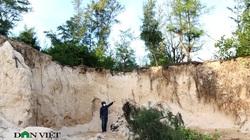 Video: Rầm rập đoàn xe khai thác cát trái phép ở rừng phi lao phòng hộ Ninh Thuận