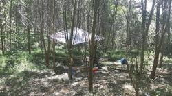 Quảng Bình: Gia cảnh 2 thợ săn thú tử vong vì nghi ngộ độc lá rừng