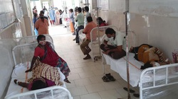 Xuất hiện bệnh lạ ở Ấn Độ, 315 người nhập viện