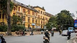 Video: Có 2 cây sưa đỏ quý hiếm trong số 40 cây xanh bị di chuyển, chặt hạ trên phố Trần Hưng Đạo
