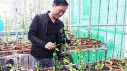 Vĩnh Phúc: Trồng những loài hoa lan rừng quý hiếm kiên trì, tâm huyết, ông nông dân này giờ là tỷ phú