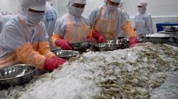 Lo sợ dịch Covid, Trung Quốc tăng cường kiểm soát hàng thủy sản đông lạnh nhập khẩu