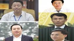 Chân dung 5 tân Phó Chủ tịch UBND TP.Hà Nội