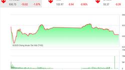 Chứng khoán ngày 10/2: VnIndex giảm hơn 10 điểm vì cổ phiếu ngân hàng