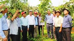 Chủ tịch Nafoods Nguyễn Mạnh Hùng: Sẽ đạt doanh thu hơn 2.300 tỷ