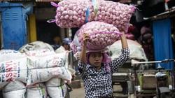 Giá tỏi Indonesia tăng vọt vì virus corona