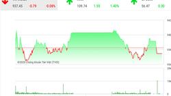 Chứng khoán ngày 14/2: VnIndex đi lùi vì VIC