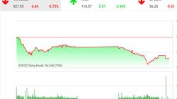"""Chứng khoán ngày 18/2: Khối ngoại lo """"xả"""" VIC, VnIndex giảm thêm gần 7 điểm"""