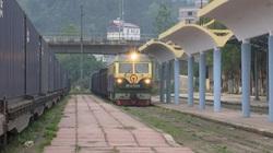 Thanh long đi đường sắt qua Trung Quốc: Thành công bất ngờ