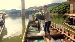 Sìn Hồ khai thác hiệu quả tiềm năng lòng hồ thủy điện